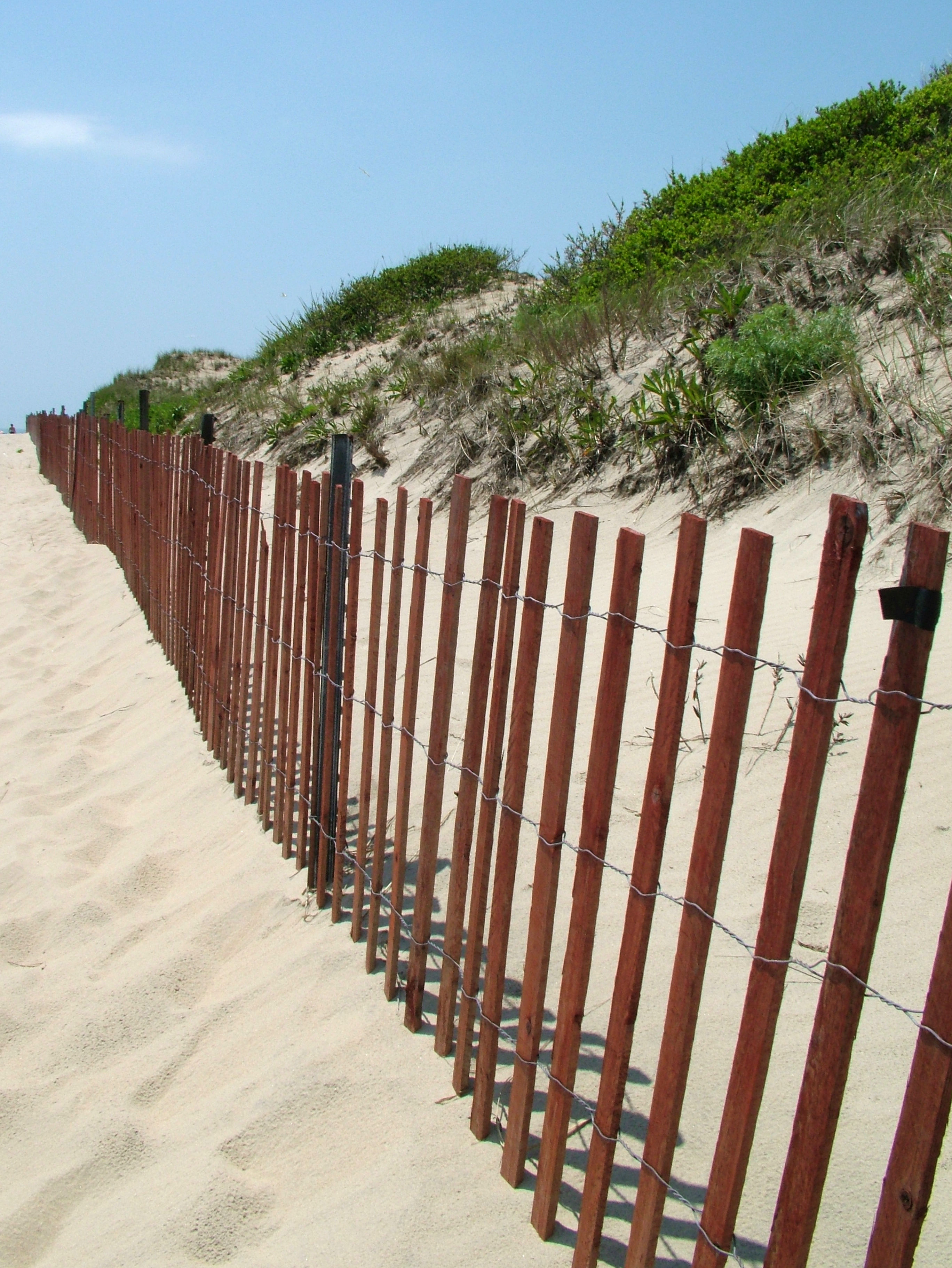 Executive Order Will Expedite Dune Construction