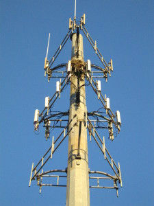 Proposed FCC Rules Could Limit NJ Municipalities' Authority Over Cell Tower Construction