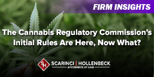 The Cannabis Regulatory Commission's Initial Rules Are Here, Now What?